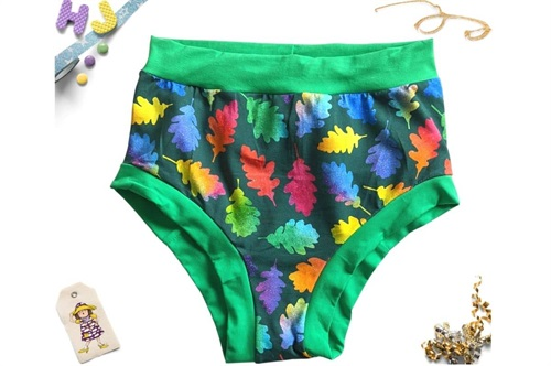 Click to order L Briefs Rainbow Leaves now